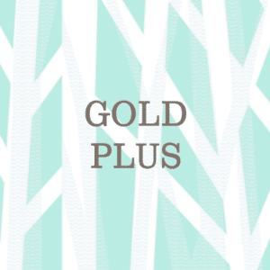 Gold Plus Text Logo