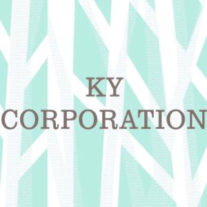 KY Corporation Waikiki Shopping Plaza