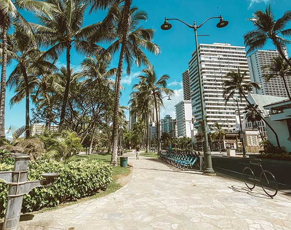 Photo looking down the sidewalk in Waikiki. On the left-hand side, there is grass, some bushes, and tall palm trees. On the right-hand side, there is a rack of blue Biki bikes, palms trees, the road, and buildings that look like a combination of shops and hotels. The sky is bright blue with one a couple small white clouds.